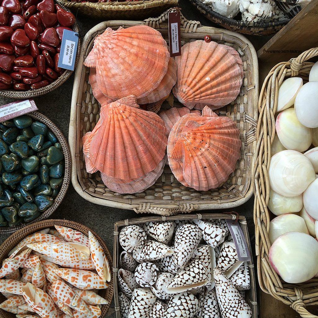 tlaquepaque shells