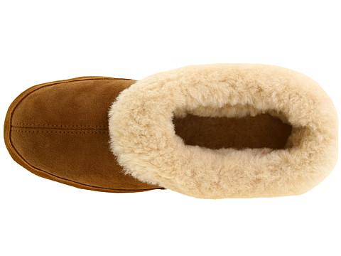 acorn-oh-ewe-brown