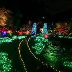 Butchart Gardens: the Magic of Christmas