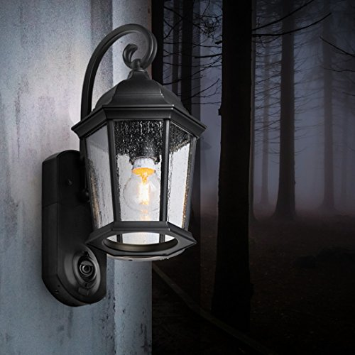 maximus coach outdoor smart security light