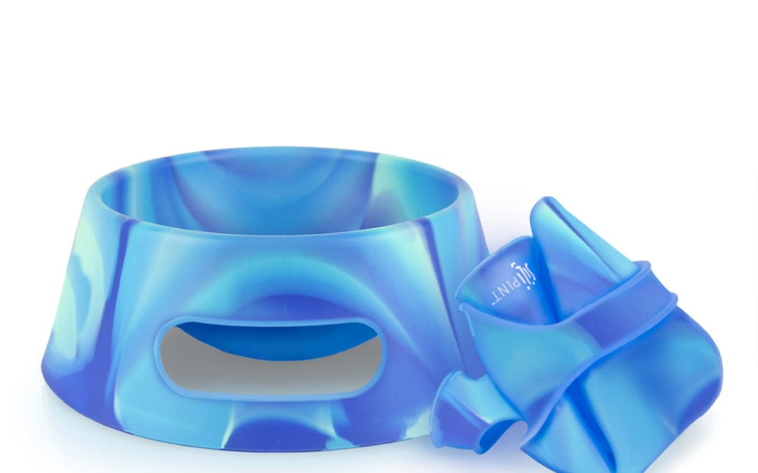 Silipint Straight Up Aqua-Fur Dog Bowl Review