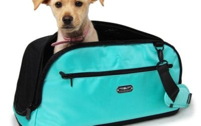 Sleepypod Atom In-Flight Pet Carrier Review