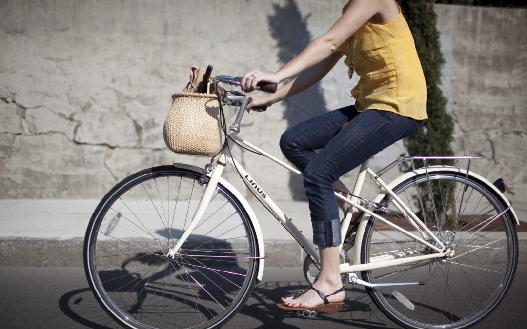 Nantucket Lightship Bike Basket Review